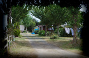 Camping la Vie *** Commequiers