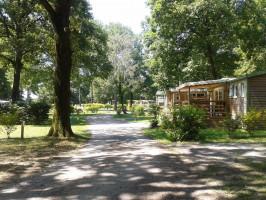Camping *** Lac de la Tricherie Les Herbiers